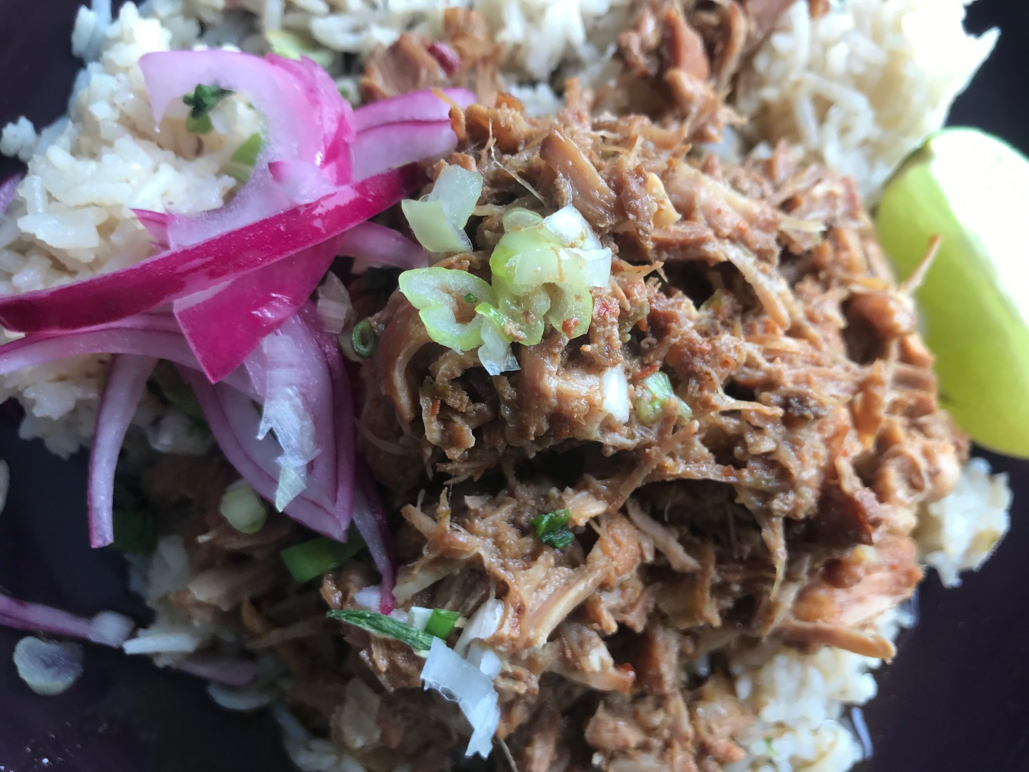 pork and rice plated, close close up
